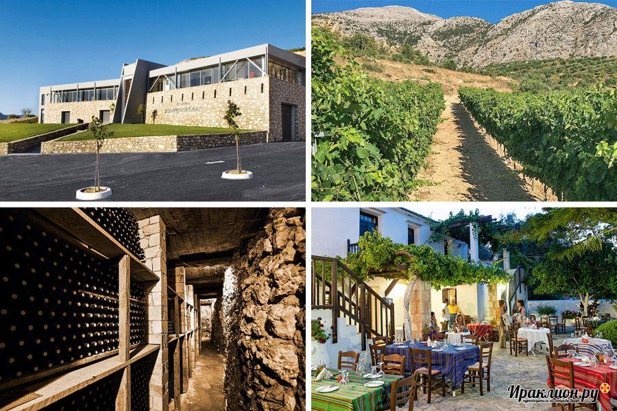 Индивидуальные гастрономические и винные туры по Криту и Санторини: гид Екатерина