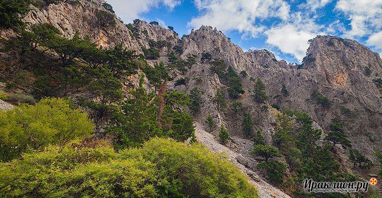 Сердце Крита - индивидуальная экскурсия для любителей природных красот.