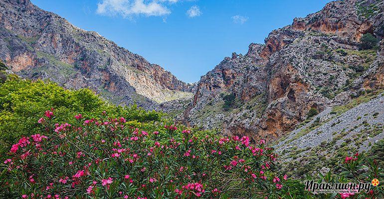 Поездка в Курталиотское ущелье. Крит, Греция.