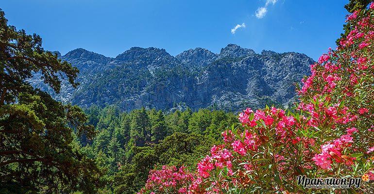 Экскурсия в Самарийское ущелье и Национальный парк Белых гор. Крит, Греция.