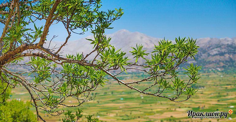 Вид на плато Лассити от пещеры Зевса. Крит, Греция.